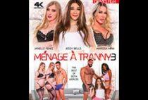 Menage A Tranny 3