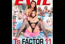 TS Factor 11
