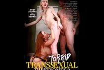 Torrid Transsexual Threesomes 2