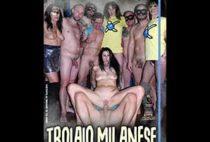 Troiaio Milanese