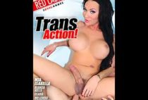 Trans Action